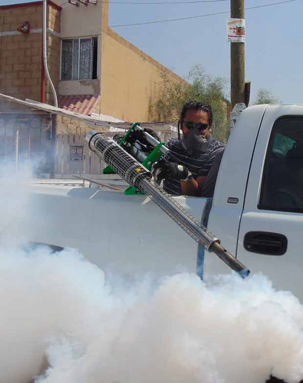 fumigation to fight pests